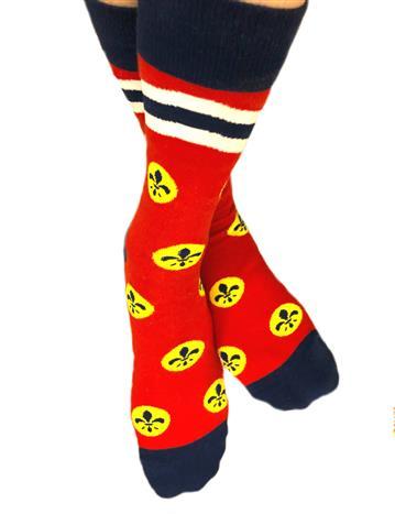 St. Louis flag socks